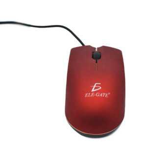 Mouse mo17